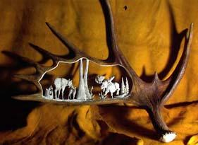 Antler Carving Moose Antler