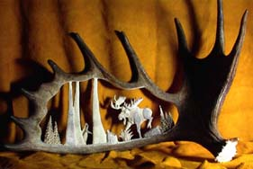 Moose Design Antler Carvings