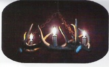 Elk Antler Chandelier For Sale
